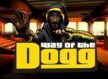 Snoop Dogg готовит собственную видеоигру